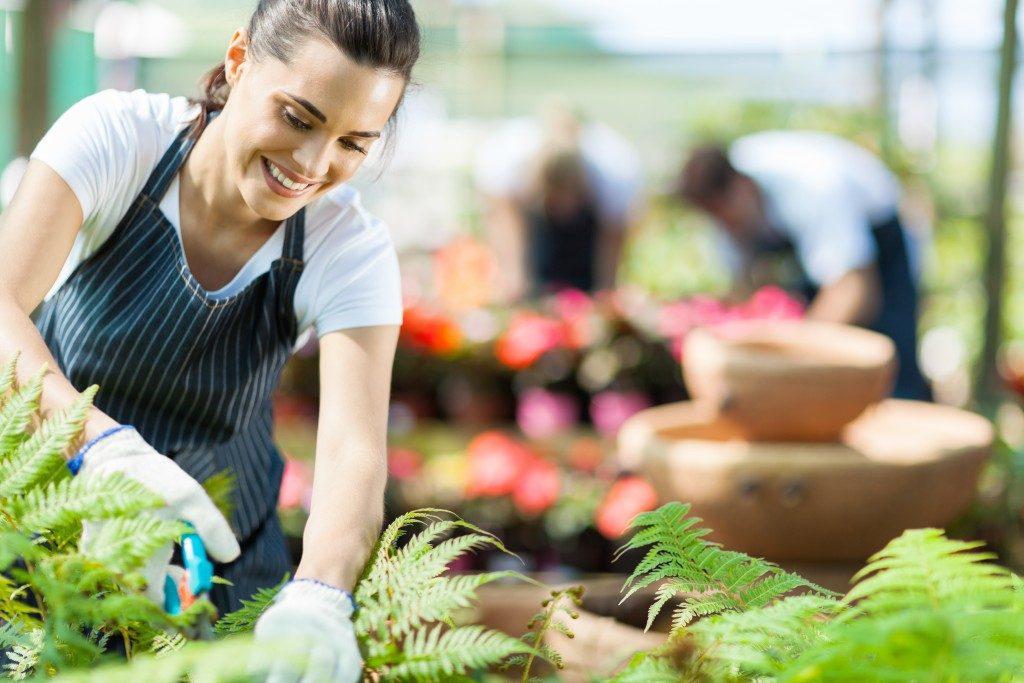 woman pruning plants in her garden