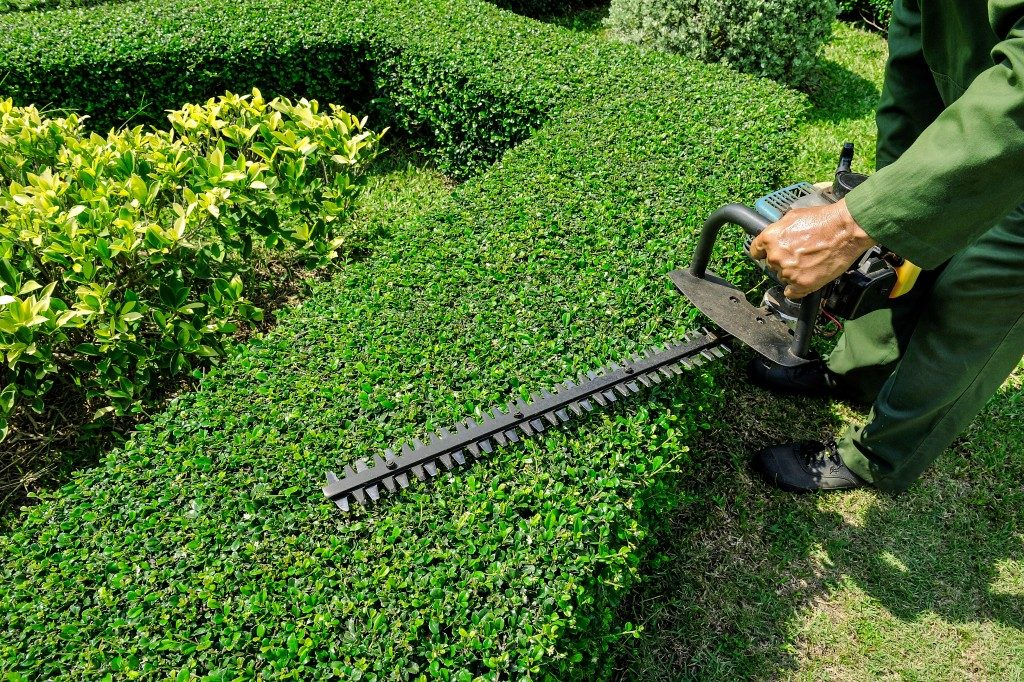 landscaping with equipment