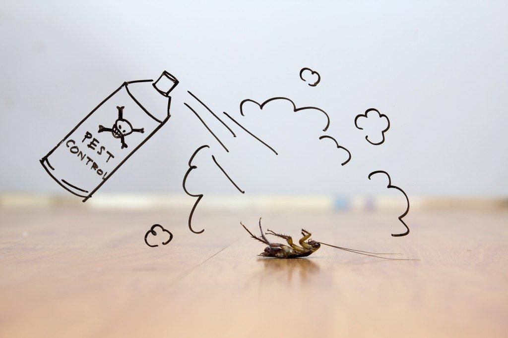 pesticide killing roach